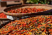 Hot red chillies drying in the sun at the street market, Luang Prabang, Luang Prabang Province, Laos, Asia