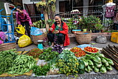 Women selling fruit and vegetables at the morning market, Luang Prabang, Luang Prabang Province, Laos, Asia