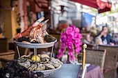 France, Alpes Maritimes, Nice, Old Nice district, Cours Saleya, presentation of seafood