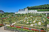 France, Indre et Loire, Loire valley listed as World Heritage by UNESCO, the castle and the gardens of Villandry property of Ang?lique and Henri Carvallo