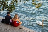 France, Paris, the banks of the Seine classified UNESCO, the Ile de la Cite, couple and a swan