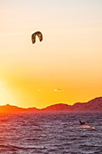 France, Bouches du Rhone, Marseille, the beaches of the Prado, the beach of the Old Chapel, Kite surfing at sunset