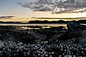 Sonnenuntergang am Aajuitsup Tasia, Kangerlussuaq, Grönland