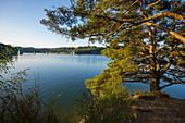 Lac de Saint-Étienne-Cantalès, near Aurillac, Cantal department, Auvergne-Rhône-Alpes, France