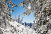 Winter hiking trail on the Tegelberg near Schwangau, Allgäu, Bavaria, Germany