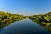 Calm river with lush vegetation, Kakadu National Park, Northern Territory, Australia
