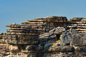 Mächtige Felsen vor blauem Himmel, Kakadu National Park, Jabiru, Northern Territory, Australien
