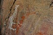 Ancient Aboriginal rock carving, Kakadu National Park, Jabiru, Northern Territory, Australia
