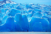 Grey Lake glacier, Torres del Paine National Park, Chile, South America