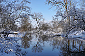 Wintermorgen am Ammer Altwasser, Oberbayern, Deutschland, Europa