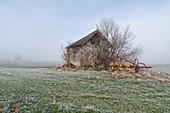 Old barn near Etting, Upper Bavaria, Bavaria, Germany