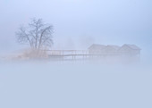 The three fishing huts of Schlehdorf in February in thick morning fog, Schlehdorf, Kochel am See, Upper Bavaria, Bavaria, Germany, Europe
