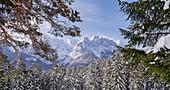 View over the wintry mountain forest to the Wetterstein Mountains, Garmisch-Partenkirchen, Bavaria, Germany, Europe
