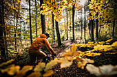 Mountain biker rides through autumn forest, bike, bike, mountain bike, autumn