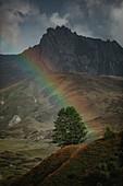 Rainbow in the Swiss mountains, rainbow, mountains,