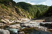 Gorges du Tarn, Parc National des Cevennes, Cevennes National Park, Lozere, Languedoc-Roussillon, Occitania, France