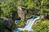 France, Gard, Blandas, cirque of Navacelles, the La Foux water-mill at the resurgence of the Vis river, the Causses and the Cevennes, Mediterranean agro pastoral cultural landscape, listed as World Heritage by UNESCO