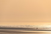 France, Somme, Bay of Somme, La Molliere d'Aval, Cayeux sur Mer, Walkers on the beach at sunset