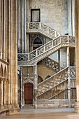 France, Seine Maritime, Rouen, Cathedral Notre-Dame, staircase known as of the booksellers (libraires), typical of the Gothic style