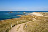 France, Morbihan, Houat, north side, walk towards the beach of Tal er Han