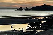 France, Morbihan, Saint-Pierre-Quiberon, photographer at the beach of Port Bara at dusk