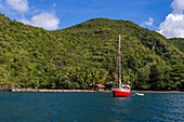 Martinique, Caribbean Sea, Black Cove with its pontoon and black sand beach, at anchor a red sailboat