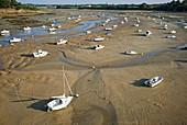 France, Ille et Vilaine, Emerald Coast, Saint Briac sur Mer, low tide