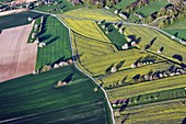 France, Doubs, Vandoncourt, rape and orchard crops, fruit trees, cherry blossoms in spring (aerial view)s