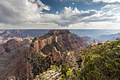 View from Cape Royal Point of the north rim of Grand Canyon National Park, UNESCO World Heritage Site, Arizona, United States of America, North America