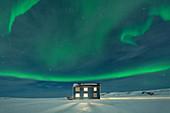 Northern Lights (Aurora borealis) on the illuminated house in the snow, Veines, Kongsfjord, Varanger Peninsula, Finnmark, Norway, Scandinavia, Europe