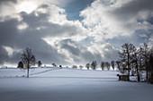 Snow-covered landscape near Bad Bayersoien, Upper Bavaria, Bavaria, Germany