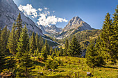 Path to Seebensee in the Gaistal with a view of the Rauher Kopf, Ehrwald in Tirol, Tyrol, Austria