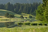 Schmalsee near Mittenwald, Bavaria, Germany