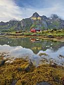 Red house, Himmeltindan, Maervoll, Vestvagoya, Lofoten, Nordland, Norway