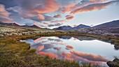 Small lake, Rondane National Park, Oppland, Norway