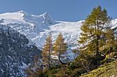 Rainerhorn, Black Wall, Großvenediger Group, Innergschlöss, East Tyrol, Tyrol, Austria