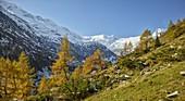 Großvenediger Gruppe, Innergschlöss, Osttirol, Tirol, Österreich