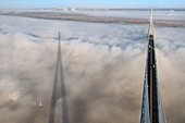 France, between Calvados and Seine Maritime, cargo passing under the Pont de Normandie (Normandy Bridge) that emerges from the morning mist of autumn and spans the Seine, the Natural Reserve of the Seine estuary in the background, view from the top of the south pylon