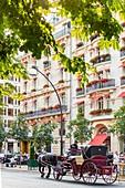 France, Paris, Champs Elysees district, Avenue Montaigne