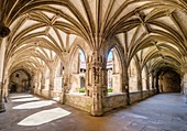 France, Lot, Quercy, Cahors, cloister of Saint Etienne Cathedral, listed as World Heritage by UNESCO, Lot valley