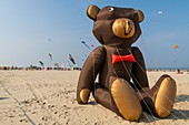 France, Pas de Calais, Opale Coast, Berck sur Mer, Berck sur Mer International Kite Meetings, during 9 days the city welcomes 500 kites from all over the world for one of the most important kite events in the world