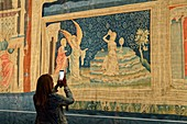 France, Maine et Loire, Angers, the castle of the Dukes of Anjou built by Saint Louis, the Apocalypse tapestry
