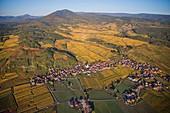France, Bas Rhin, Alsace Wine Route, Nothalten, village, church, vineyard (aerial view)