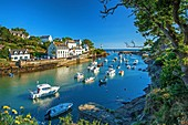France, Finistere, Clohars-Carnoet, Doelan, small typical port of Finistere South