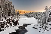 Patoniva River and snow covered winter landscape, Oulanka National Park, Kuusamo, Finland, Europe