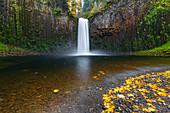Abiqua fällt im Herbst, Scotts Mills, Marion County, Oregon, Vereinigte Staaten von Amerika, Nordamerika