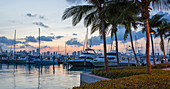 Panoramic view across marina from South Pointe Park, dusk, Downtown Miami in background, South Beach, Miami Beach, Florida, United States of America, North America