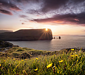 Sunset view on Rising og Kellingin sea stacks with yellow flowers in the foreground, Faroe Islands, Denmark, Europe