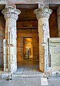 Priestess Tagerem Statue, Temple of Dendur, Metropolitan Museum of Art, New York City, New York, USA