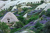 Turkey, Nevsehir, Cappadocia, listed as World Heritage by UNESCO, Goreme National Park, Urchisar